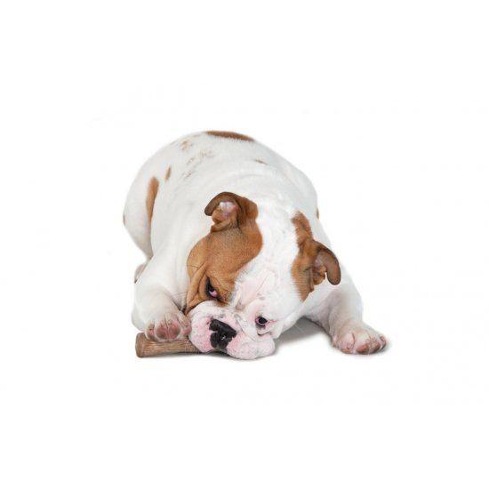 afbeelding Hondenspeelgoed Dogwood