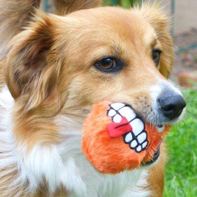 afbeelding Hondenspeelgoed Fluffy Grinz Oranje