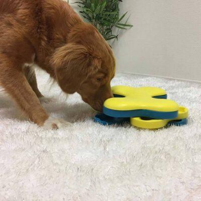 afbeelding Hondenpuzzel Dog Tornado