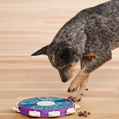 afbeelding Hondenpuzzel Dog Twister