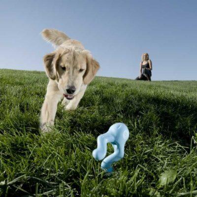 afbeelding Hondenspeelgoed Zogoflex Tizzi Aqua
