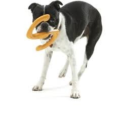 afbeelding Hondenspeelgoed Zogoflex Bumi Oranje